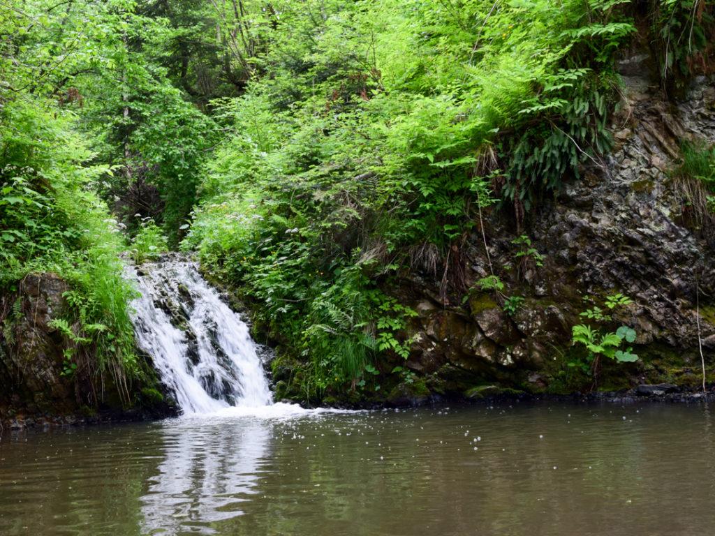 Водопад в Карпатах